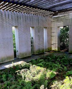 Parc Andre Citroen, Paris Parisian Architecture, Green Architecture, Landscape And Urbanism, Landscape Design, Plant Design, Garden Design, Gilles Clement, Magnolia Gardens, Brewery Design