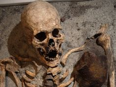 The skeleton dating from AD found buried in the ancient minster town of Southwell, Nottinghamshire has shed light on rare 'vampire' burials in Britain. Spooky Scary, Creepy, Vampire Skull, Aliens, Vampire Pictures, Real Vampires, Vampire Stories, Historical Artifacts, Ancient Mysteries