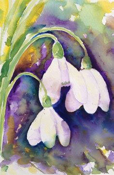 Snowdrops watercolour