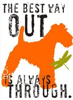 Irish Terrier Note Card Set Watching /& Waiting