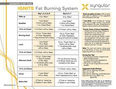 Getting started on your 8 day body transformation?!?!  Here is our chart to follow during the first 8 days!   Questions?  www.ignitewithkristie.com