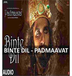 Binte Dil Guitar Chords by Arijit Singh #bintedil #arijitsingh #padmaavat #anyguitarchords