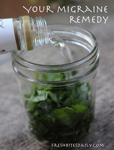 Your new migraine remedy: A simple and inexpensive herbal tincture at FreshBitesDaily.com