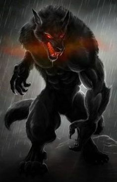 Wolf Pack Legend - You are in the right place about tattoo hombre Here we offer you the most beautiful pictures about - Dark Fantasy Art, Fantasy Wolf, Fantasy Kunst, Werewolf Tattoo, Werewolf Art, Anime Wolf, Monster Art, Wolf Craft, Demon Wolf