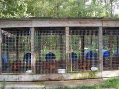 9eb641534279aff05eb8e43ff3fd19c0--dog-pen-dog-kennels
