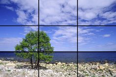 Photo tips #2: Rule of thirds - The Quiet Picture