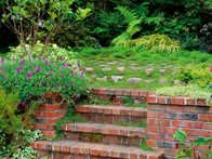 A flight of steps made from traditional used bricks gives this garden the country look and feel that the owner desired.