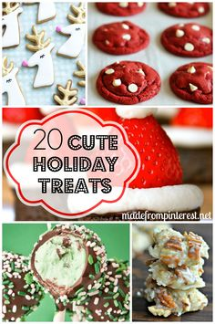 20 Cute Holiday Treats has every popular Christmas treat you are looking for including crunchy toffee, sugared popcorn to perfectly baked cookies!