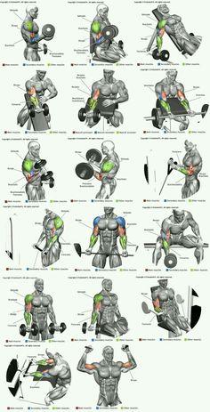 Força e Saúde