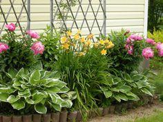 Клумбы для многолетних растений своими руками