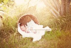 Excellent baby nursery tips are offered on our internet site. Take a look and you wont be sorry you did. Foto Newborn, Newborn Session, Newborn Pictures, Baby Pictures, Newborn Pics, Newborn Care, Family Pictures, Outdoor Newborn Photography, Outdoor Newborn Photos