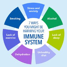 Immune System – The Only Soldier In Your Army | QueenBeesZone