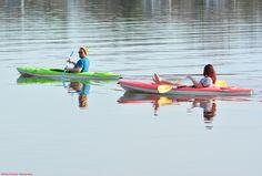 Kayakers, passing Logan's Point.