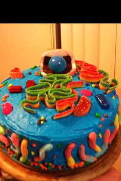 Edible animal cell   Animal cell, Edible cell project ...