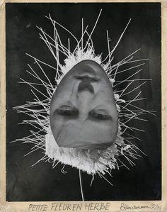 Raoul Hausmann- Petite Fleur en Herbe photomontage, 1932
