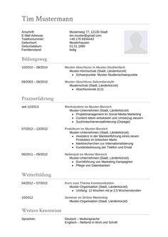 Für jeden Beruf gibt es nun die passende Vorlage! Dieses Muster ist geeignet für folgende Berufe: Buchhalter, Controller, Rechnungsprüfer, Telefonist, Sachbearbeiter, Sekretär, Bürofachkraft, etc.