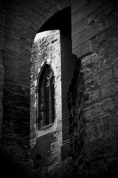Avignon...Papal palace; I have the same shot in sepia :)