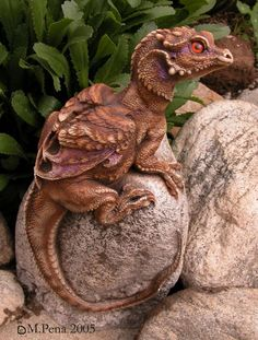 Little Rock Dragon by M. Pena