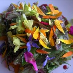 Salad with edible blossoms from garden in black currant rosemary vinaigrette