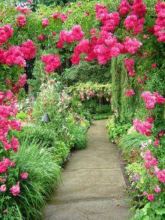 Pathway 3 by Alienesse-Stock on DeviantArt Most Beautiful Gardens, Beautiful Flowers Garden, Amazing Flowers, Beautiful Roses, Amazing Gardens, Beautiful Landscape Wallpaper, Beautiful Flowers Wallpapers, Beautiful Landscapes, Beautiful Photos Of Nature