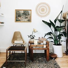 """arlee park //  new goodies!  framed horse print: $72  wicker wall decor: $24  tan chair: $64  books (top to bottom): $18, $26, $18  wood stool w/ brass: $58  kilim rug (43"""" x 60""""): $575  wood & glass nesting tables (set of 3): $260  gold table lamp: $44  ceramic planter w/ plant: $26  red wing candle holders: $46  quartz: $98  spaulding & co. clock: $60  ceramics: large $16 smal..."""