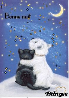 Good night sister and yours, sweet dreams Good Night Images Cute, Cute Good Night, Good Night Messages, Night Love, Good Night Sweet Dreams, Good Night Friends, West Highland Terrier, Scottie Dog, Cute Gif