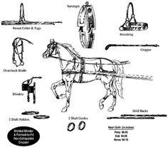 Image result for nylon driving harness