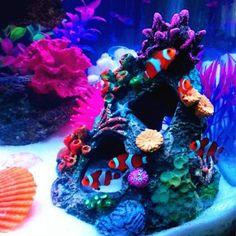 1.es Waschen mit klaren Wasser mehrmals vor dem ersten Gebrauch. . 2. Ornament ist aus ungiftigem Harzmaterial gefertigt und macht eine aufregende Verzierung in jedem Aquarium .. Ändern Sie Ihr Aquarium in eine schöne Landschaft 3. .. 4. Sie sind absolut sicher für Fische .. 5. Nicht nur für Ihr Aquarium Landschaftsbau bringt wunderbare Persönlichkeit dekorative Schönheit, sondern auch mehr Fisch Bild als Angebot an natürlicher Umgebung und bietet Schutz und Unterhaltung. Aquarium Ornaments, Aquarium Decorations, Shell Ornaments, Aquarium Filter, Aquarium Fish Tank, Pet Supplies, Coral, Cave, Rock