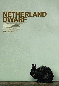 Netherland Dwarf poster by jeremy saunders