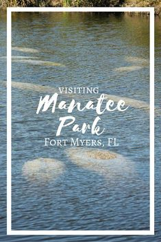 Manatee Park in Fort Myers, FL Mantee Park in Fort Myers, Florida is a great place to see manatees in their natural habitat.Mantee Park in Fort Myers, Florida is a great place to see manatees in their natural habitat. Visit Florida, Florida Vacation, Florida Travel, Florida Home, Florida Beaches, Vacation Spots, Travel Usa, Vacation Ideas, Florida Fair