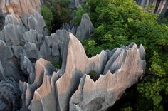 Stone Forest, China  The tall rocks give the illusion of petrified trees, which is where the name shilin - or stone forest - comes from.