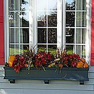 Fall and Winter Window Box Ideas