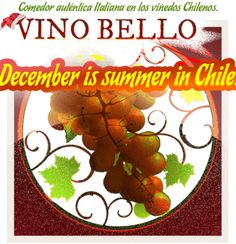 Here are our summer picks for 2013. We hope you enjoy your stay in the Colchagua Valley!  www.Vino-Bello.com