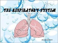 RESPIRATORY SYSTEM from THE SCIENCE CORNER on http://TeachersNotebook.com -  (98 pages)  - RESPIRATORY SYSTEM 98 SLIDES, PowerPoint Presentation and Printable Graphic Organizers with a quiz. RESPIRATION, breathing, cellular respiration, biology, anatomy, human respiration, respiratory diseases, respiratory disorders, caring for your respiratory