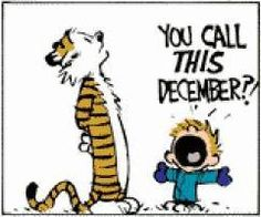 """you call this december?"" by calvin"