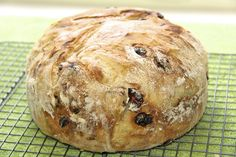 Cranberry Pecan Artisan Bread - Another 5 Minute Bread! - thecafesucrefarine.com