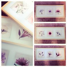 First artwork project for the nursery! The photos are colored x-ray images of flowers.