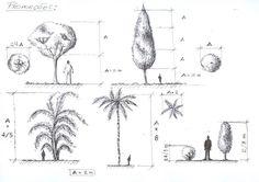 Começamos a estudar as mais diversas paisagens e a vegetações existentes: Logo em seguida, as técnicas para executa-las da melhor mane...