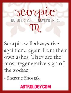 Scorpio the scorpion, the eagle, the phoenix