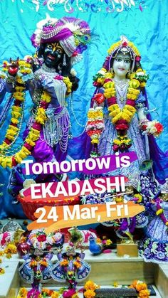 Tomorrow Papmochani #EKADASHI (पपमचन एकदश) on 24 Mar (Fri) - #FAST from grains and pulses.  Ekadashi is VERY dear to Lord Sri Krishna and is therefore very auspicious. It is mentioned as the mother of devotional service (भकत-जनन)    Chant ( जप )  हर कषण हर कषण कषण कषण हर हर हर रम हर रम रम रम हर हर More and more on this blessed event!!   One should not eat grains on ekadashi as all sins of kaliyuga enters in grains on ekadashi.   EKADASHI Feast at 2 PM in ISKCON Temple Chandigarh.   24 Mar…