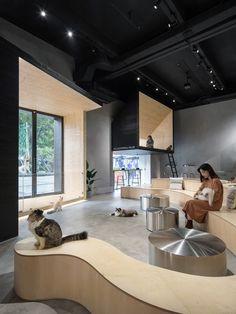 Meow Restaurant,Guangzhou, China / E Studio — urdesignmag Cafe Interior, Shop Interior Design, Cafe Design, Retail Design, Pet Cafe, Waiting Room Design, Armani Hotel, Cat Hotel, Guangzhou