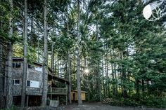 Nestled at the foot of scenic, snow-capped Mt. Adams WA, this charming treehouse-style cabin is not only in a place of wild beauty, but it's also ideal for a romantic glamping trip. With its stunning, woodsy decorations, glampers will be able to escape the hustle and bustle of daily life to a tree house cabin that will take away all their worries. Sit outside and read a book for hours on end, or pack up a backpack and take a long hike throughout the gorgeous nearby wilderness. Glampers…