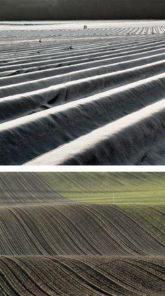 Field: Photography Series by Joerg Marx