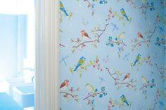 Early Bird wallpaper