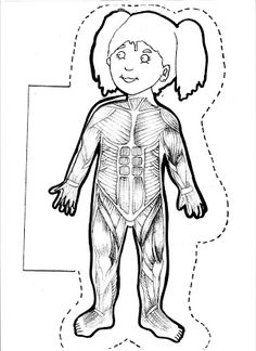 Free human body printables for kids. Body Preschool, Preschool Activities, Montessori Classroom, My Themes, Science And Nature, Pre School, Life Skills, Teaching Kids, Human Body