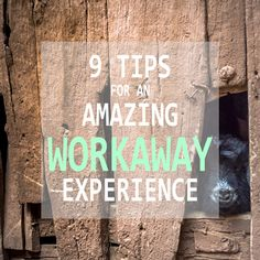 9 Tips for an amazing workaway experience