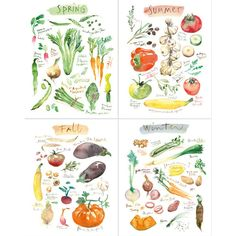 Watercolor vegetable print set, Four seasons art, Set of 4 prints,... (5,685 PHP) ❤ liked on Polyvore featuring home, home decor, wall art, garden home decor, garden wall art and vegetable painting