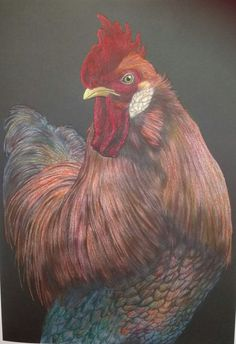 Rooster by Joan Mahoney