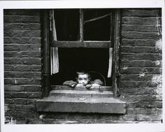 allery In 1908, Lewis Hine became the official photographer of the National Child Labor Committee. Over the next ten years, Hine photographed child workers across the country, from New York to the Carolinas to Pittsburgh, documenting the appalling conditions in which these children worked. Unlike documentary photographers who seek simply to highlight events and conditions, Hine did so with a political goal in mind: to end the practice of child labor. At the time, business owners across the…