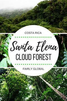 Monteverde Cloud Forest is one of the most popular travel destinations in Costa Rica. Explore Central America beyond the beaten path in Santa Elena Nature Reserve and experience the magic of cloud forest.